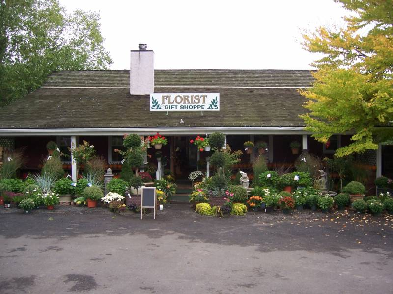 Welcome To Exquisite Environments, Your One Stop Garden Center